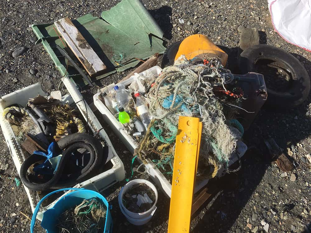 The result - 71 kg of trash collected from 1 km of coastline! See some of the most unusual items we collected below.